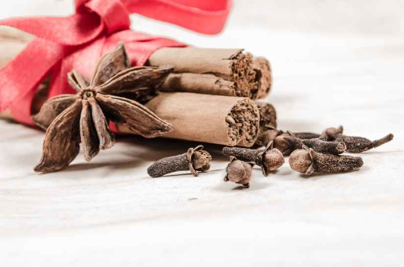 red winter spices decoration